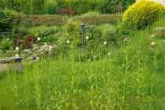 2021 - Pomáz - teljes körű kertkarbantartás