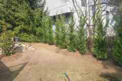 2021 - Budapest, 3 kerület - teljes körű kertkarbantartás  - folytatás